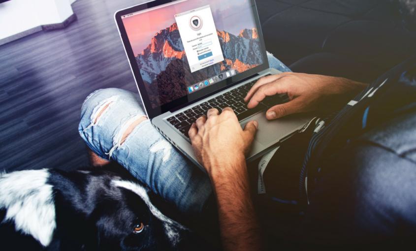 Vigilancia en línea: Evita el seguimiento de tu actividad.
