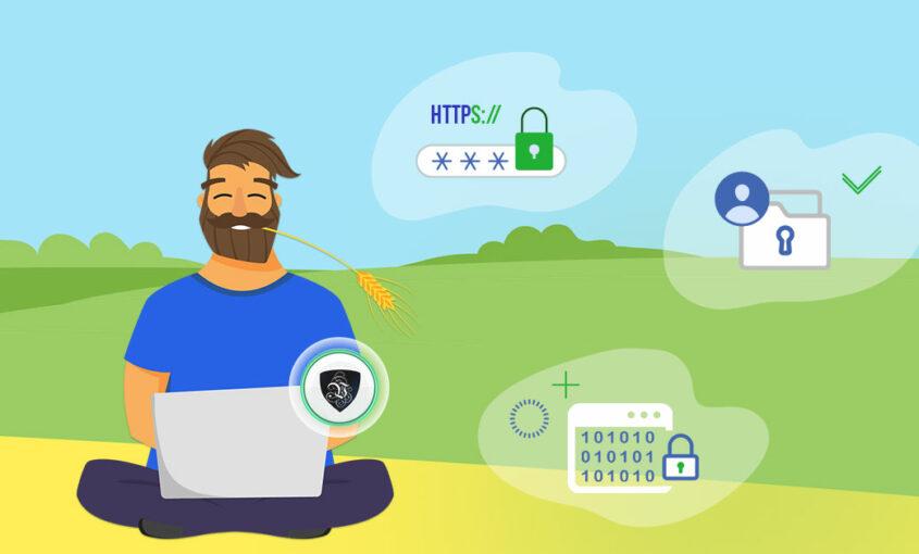 Безопасность фриланса: правила дистанционной работы | VPN | Le VPN | ВПН | ВПН защита